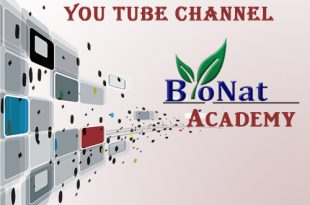 you tube feature